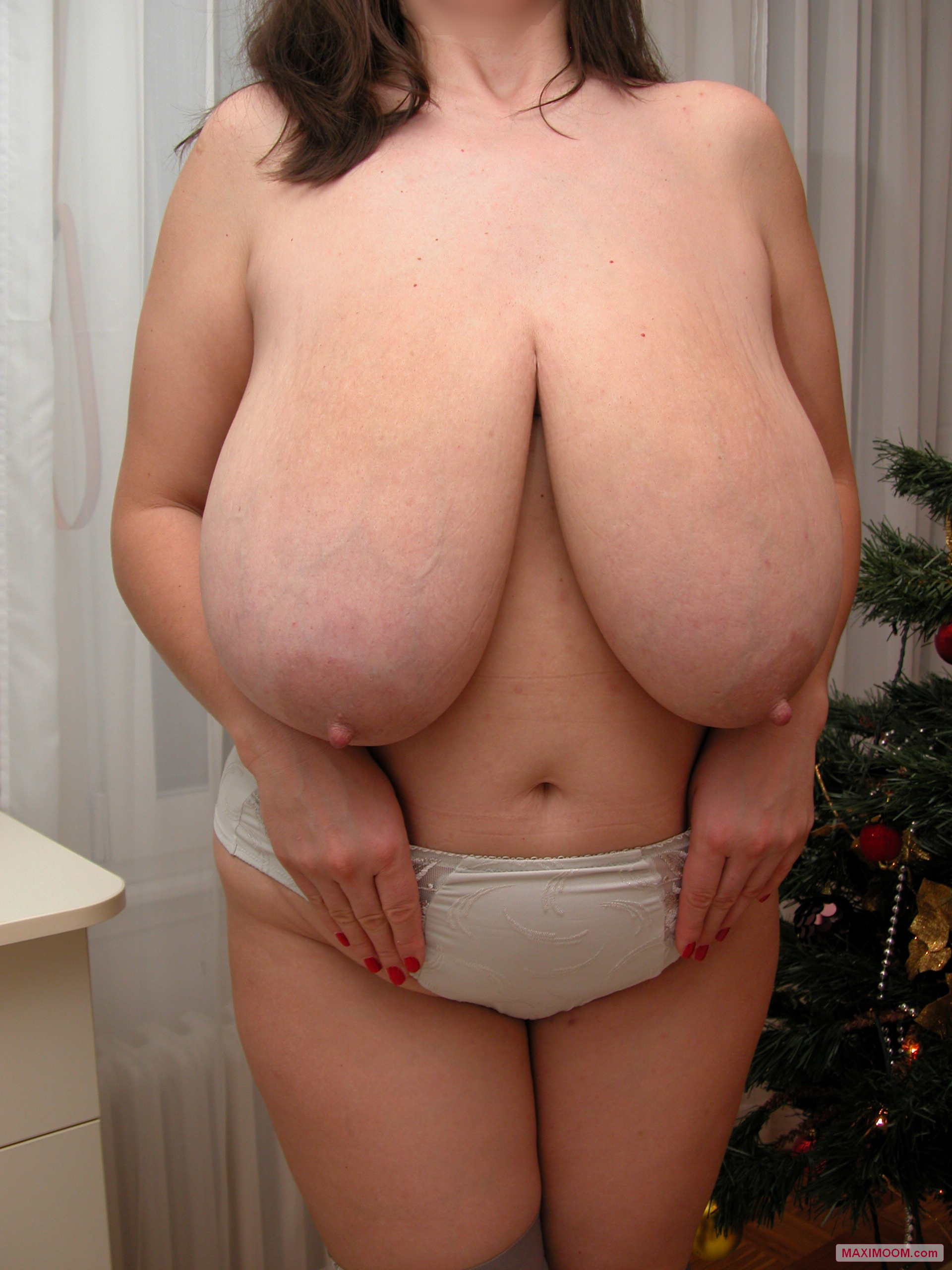 Jingle Bell Tits Hanging Very Low-8572